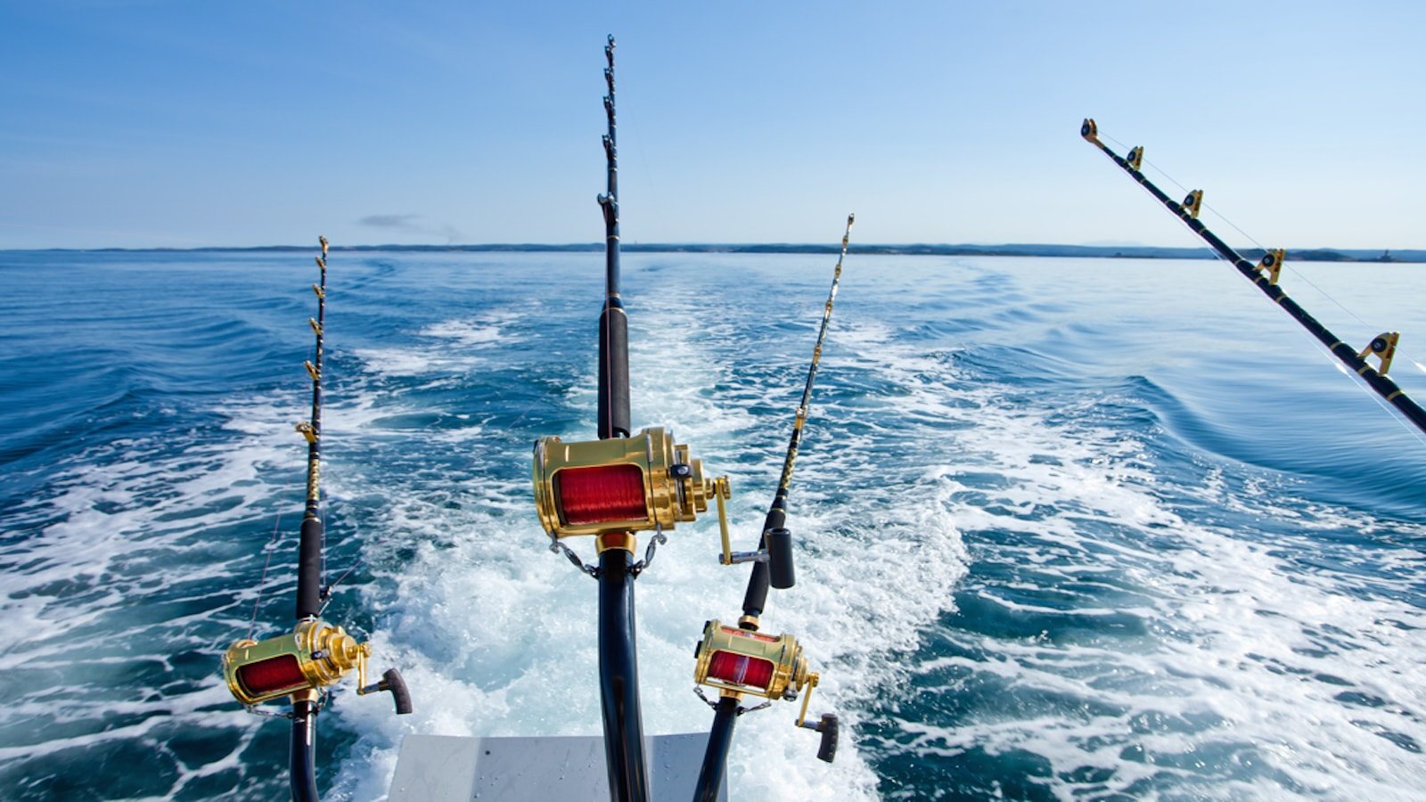 Top fishing spots in new england iyc for Best fishing spots